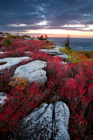 Dolly_Sods_8539